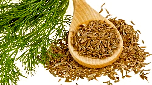 cumin, india, Indian, ingredients, jeera, jirako geda, safed jeera, spice, zeera, zira,