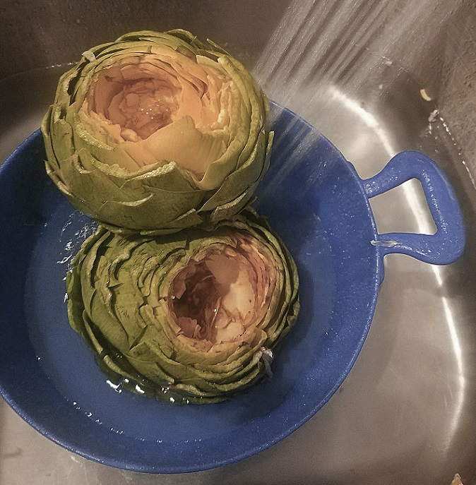 these are cleaned snipped artichokes getting washed in the sink
