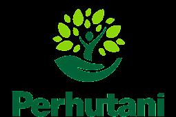 Download Logo Perhutani Terbaru Vektor AI