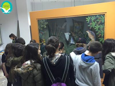 Επίσκεψη μαθητών Γυμνασίου Νέας Σελεύκειας στο Κέντρο Πληροφόρησης Σαγιάδας