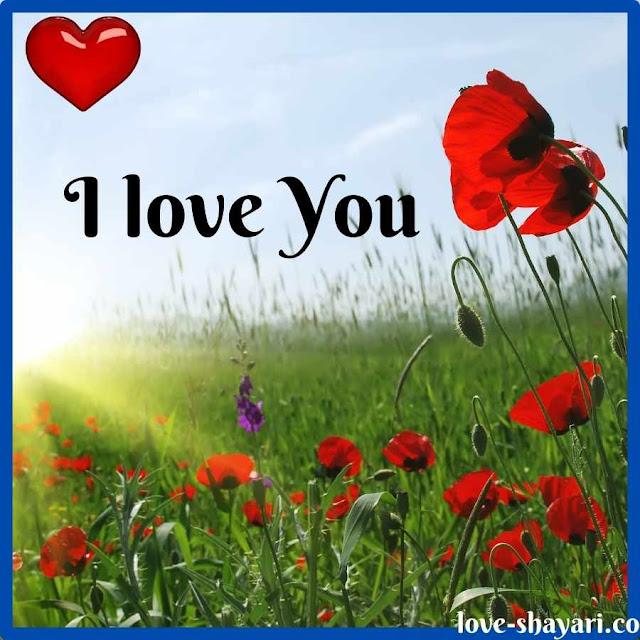 i love you photos