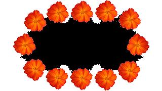 3 Moldura flor laranja 2 png