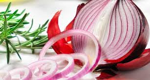 onion used in ancient time