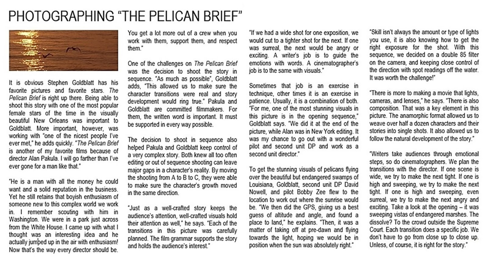 pelican brief essays Opening scenes in three films: easy rider, the french lieutenant's woman and the pelican brief (1969, december 31) in megaessayscom retrieved 02:08.