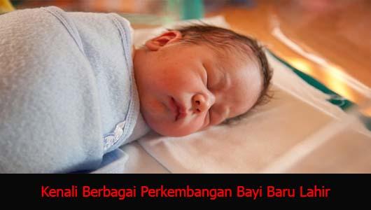 Kenali Berbagai Perkembangan Bayi Baru Lahir