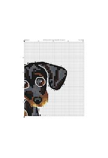 schema punto croce cucciolo di bassotto