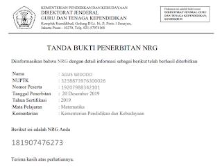 File Pendidikan Cara Printout Bukti Penerbitan NRG Resmi dari Kementerian GTK