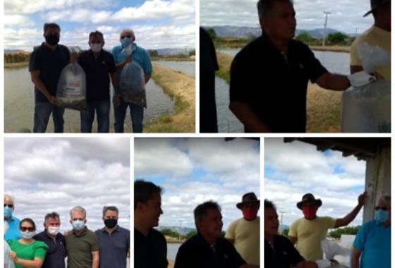 Alevinos: Prefeitura recebe filhotes de peixes para distribuição com Produtores Rurais