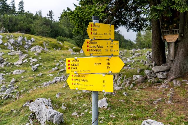 Gamsknogel und Kohleralm  Bergtour Inzell  Wanderung Chiemgauer Alpen 16