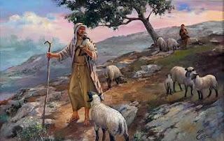 pastor de ovelha