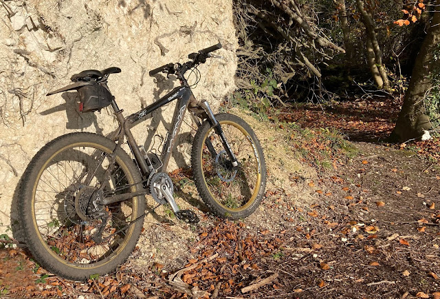 mountain bike leant against uprooted tree