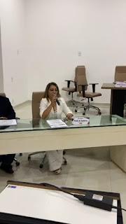 Em sua fala na Câmara Municipal, vereadora Neide de Teotônio faz prestação de contas de seu mandato e avalia de forma positiva