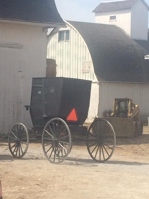 witness old amish society The amish operate a patriarchal society, and sexual abuse has been known to occur, including incest and pedophilia for all intents and purposes, it is impossible to tell how bad the problem is, because it is handled within the community.