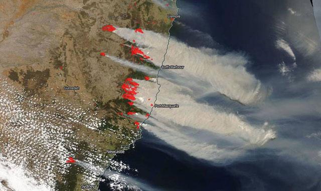 Kebakaran Hutan Bisa Mengubah Cuaca