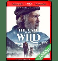 EL LLAMADO SALVAJE (2020) FULL 1080P HD MKV ESPAÑOL LATINO