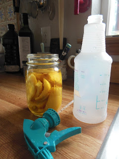Citrus and Vinegar Spray Cleaner, all natural and smells great!