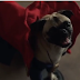 Versão fofinha dos Vingadores é apresentada no novo comercial  do longa Doutor Estranho