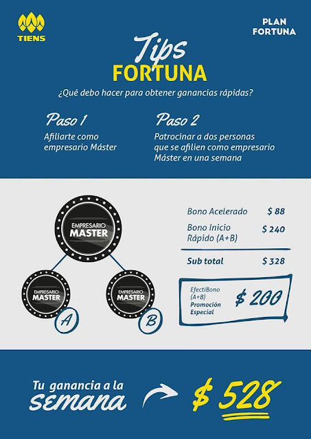 Tips Plan Fortuna
