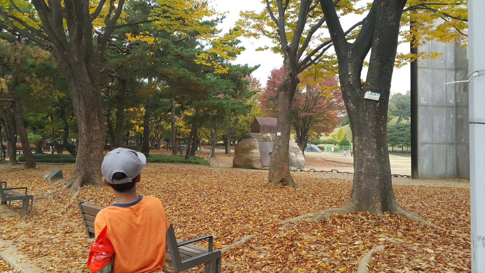 Walk in the colorful park