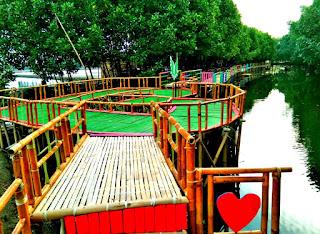 Cantiknya Mangrove Sungai Jingkem Desa Samudera Jaya bikin jatuh cinta