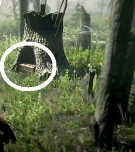 Blackbone Forest Treasure, Possible Location 4, Red Dead Online