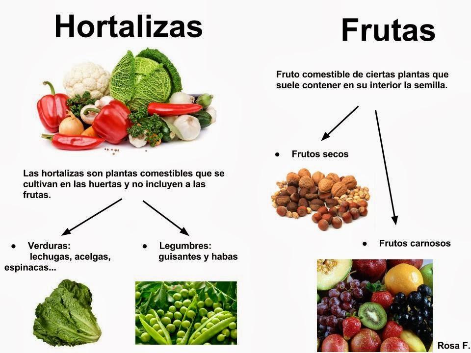 Maestra de primaria hortalizas verduras y legumbres for Semillas de frutas y verduras