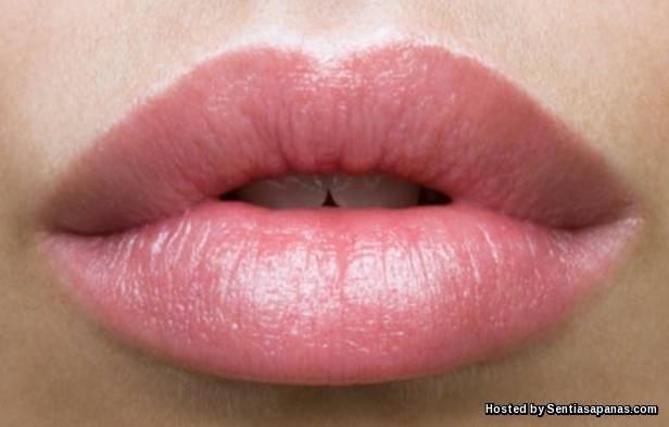 Bibir yang tebal