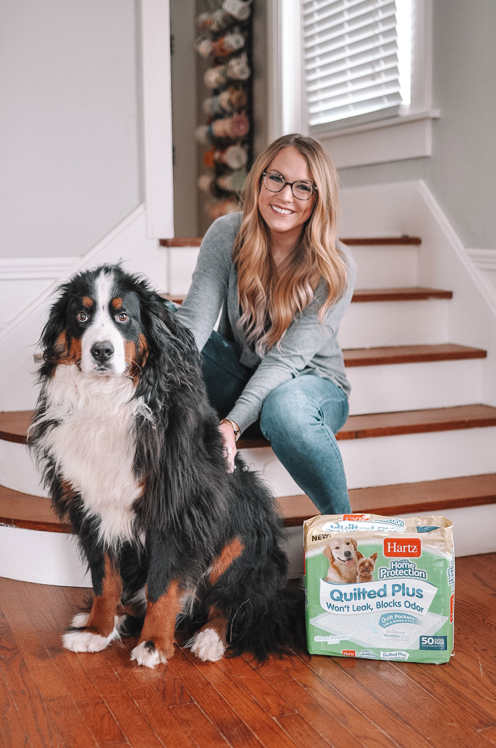 Amanda Martin of Amanda's OK and her Bernese Mountain Dog share how they use Hartz Dog Pads at home