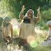 Ya hay Fecha de Lanzamiento de la Nueva Serie de Vídeos del Libro de Mormón