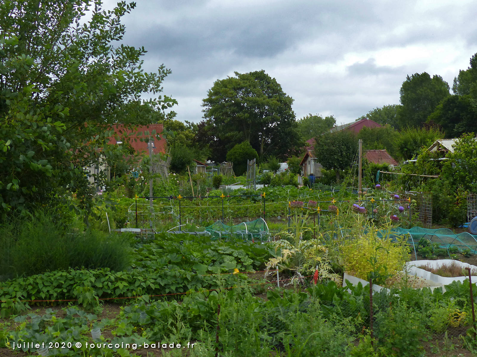 Jardins Familiaux Beau-Séjour Tourcoing 2020