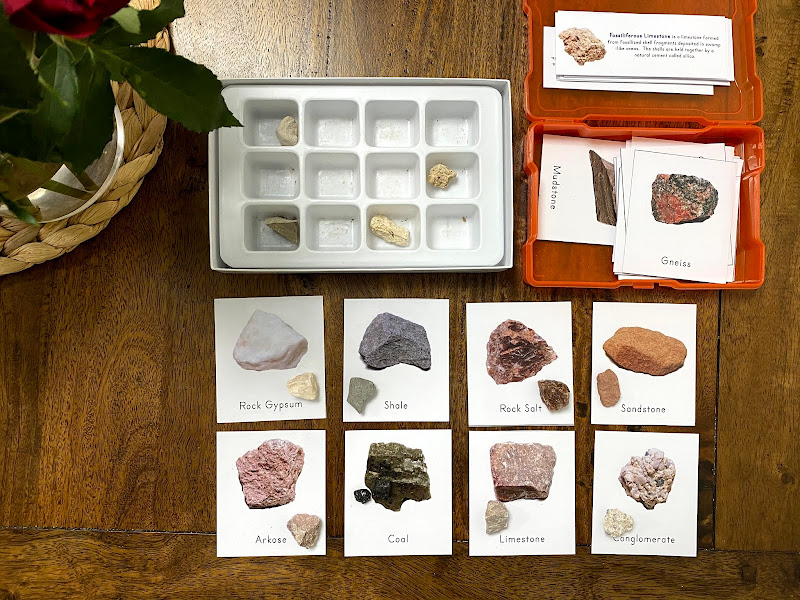 Rock Cycle Lesson for Kids: SEDIMENTARY ROCKS