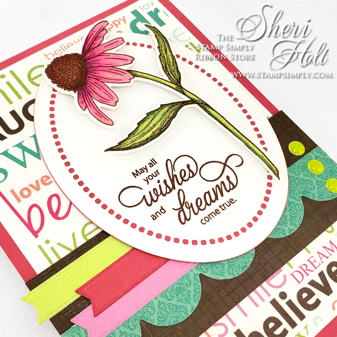 Stamp Simply Coneflower stamp & die combo