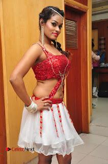 Telugu Dancer Nisha  Pictures at Babu Bangaram Audio Launch  0007.JPG