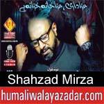 https://www.humaliwalyazadar.com/2018/09/shahzad-mirza-nohay-2019.html
