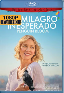 Un milagro inesperado (2020)[1080p BRrip] [Latino-Inglés] [Google Drive] chapelHD
