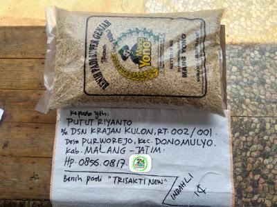 Benih padi yang dibeli   PUTUT RIYANTO Malang, Jatim.    (Sebelum di Packing).