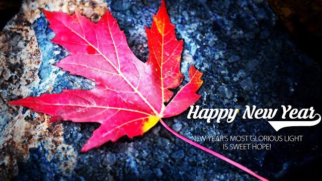 Happy New Year 2017 HD Photos