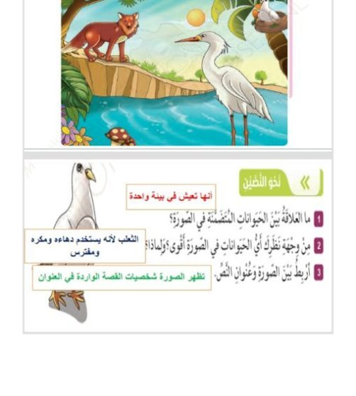 حل درس الحمامة والثعلب والمالك الحزين لغة عربية