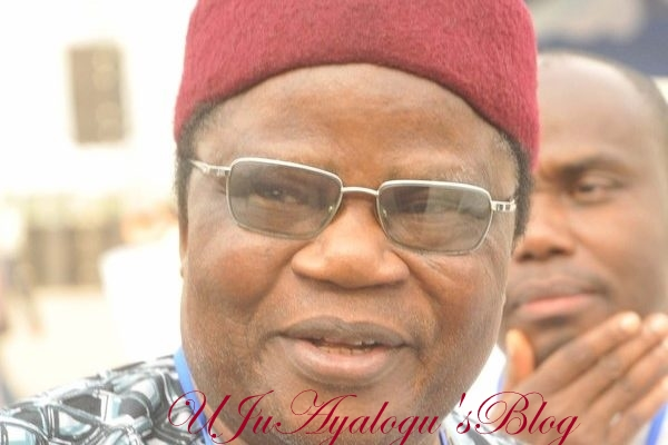 2019: Buhari will re-contest, Igbos will vote for him – Tony Momoh