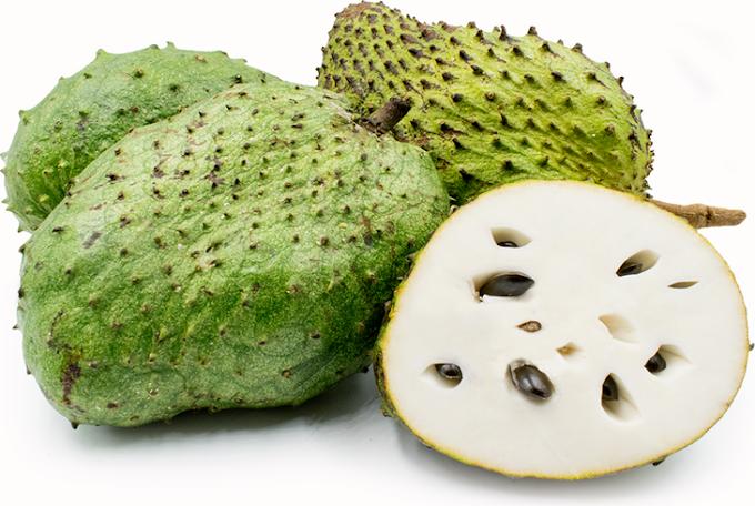 Potensi Sirsak (Annona muricata) sebagai Pencegahan Kista Ovarium || Zahrapedia Artikel 2020