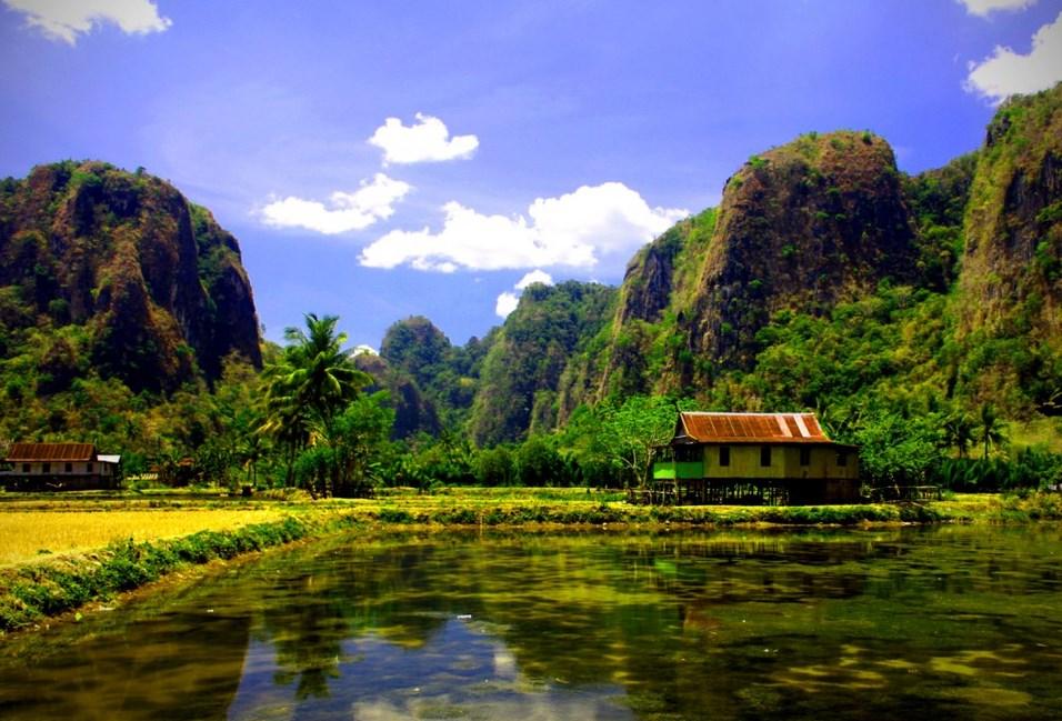 Hutan Karts Rammang-Rammang
