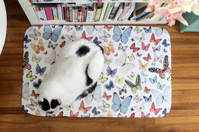 watercolor butterflies, butterfly bath mat, Society6, bath mat, surface pattern design, rescue cat, black and white cat, My Giant Strawberry, Anne Butera