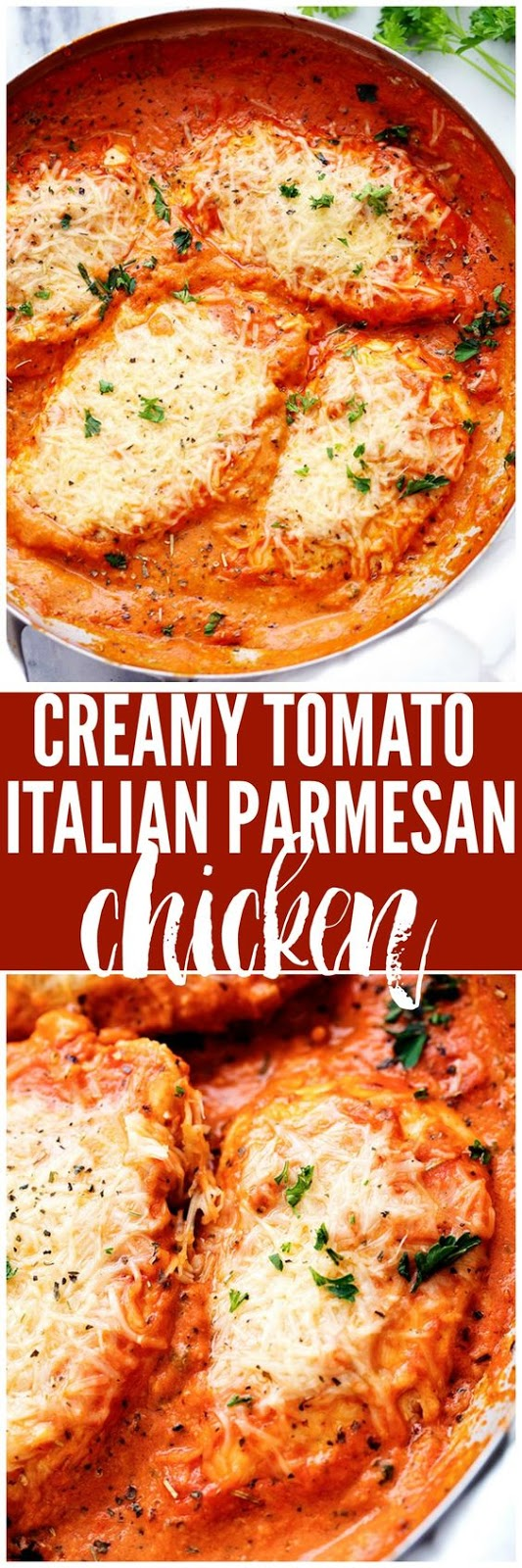 ★★★★☆ 7561 ratings | CREAMY TOMATO ITALIAN PARMESAN CHICKEN  #HEALTHYFOOD #EASYRECIPES #DINNER #LAUCH #DELICIOUS #EASY #HOLIDAYS #RECIPE #DESSERTS #SPECIALDIET #WORLDCUISINE #CAKE #APPETIZERS #HEALTHYRECIPES #DRINKS #COOKINGMETHOD #ITALIANRECIPES #MEAT #VEGANRECIPES #COOKIES #PASTA #FRUIT #SALAD #SOUPAPPETIZERS #NONALCOHOLICDRINKS #MEALPLANNING #VEGETABLES #SOUP #PASTRY #CHOCOLATE #DAIRY #ALCOHOLICDRINKS #BULGURSALAD #BAKING #SNACKS #BEEFRECIPES #MEATAPPETIZERS #MEXICANRECIPES #BREAD #ASIANRECIPES #SEAFOODAPPETIZERS #MUFFINS #BREAKFASTANDBRUNCH #CONDIMENTS #CUPCAKES #CHEESE #CHICKENRECIPES #PIE #COFFEE #NOBAKEDESSERTS #HEALTHYSNACKS #SEAFOOD #GRAIN #LUNCHESDINNERS #MEXICAN #QUICKBREAD #LIQUOR