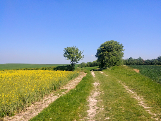 Ashwell restricted byway 2