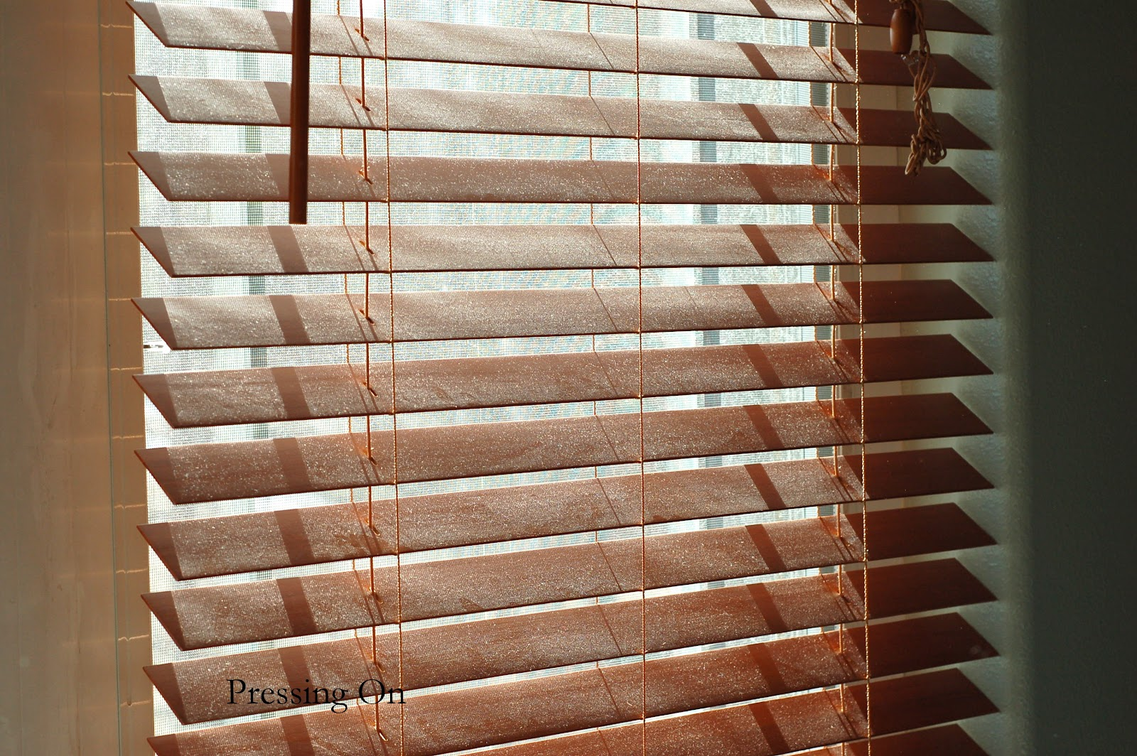 Pressing On How To Easily Clean Wood And Faux Blinds