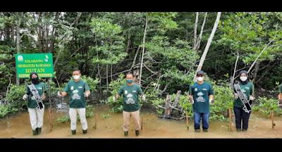 Penanaman 500 Mangrove Warnai Festival Mangrove Kota Langsa