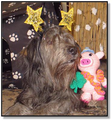 Silvesterparty mit Hund