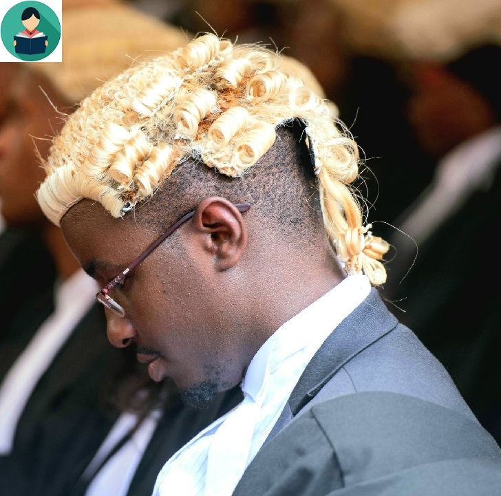 Barrister's Wig: What to Know!
