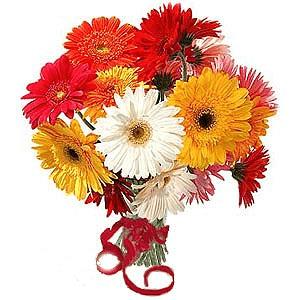 Hangi çiçek ne anlama gelir