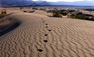 Don't let Death Valley be the death of you